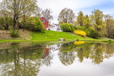 Claverack Single Family Home For Sale: 348 Catskill View Road