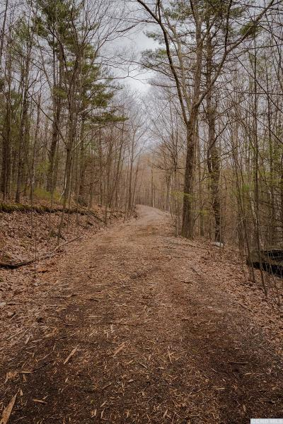 Austerlitz NY Residential Lots & Land For Sale: $225,000