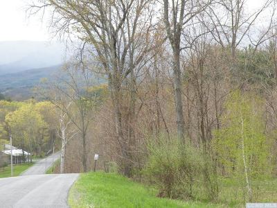 Greenville NY Residential Lots & Land For Sale: $159,000