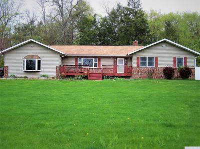 Greenville NY Single Family Home For Sale: $244,900