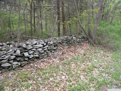 Cairo NY Residential Lots & Land For Sale: $36,000