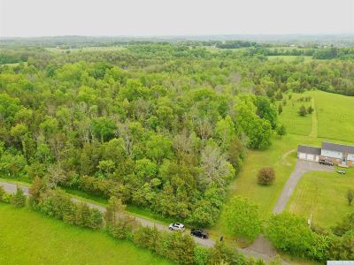 Greene County Residential Lots & Land For Sale: 394 Flats Road