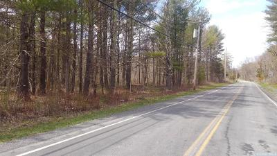 Cairo NY Residential Lots & Land For Sale: $26,500