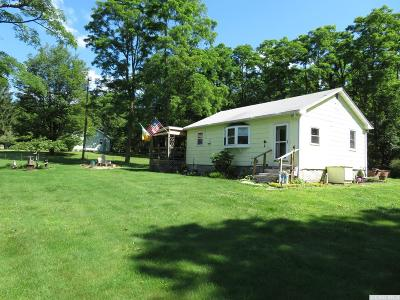 East Durham NY Single Family Home For Sale: $139,000