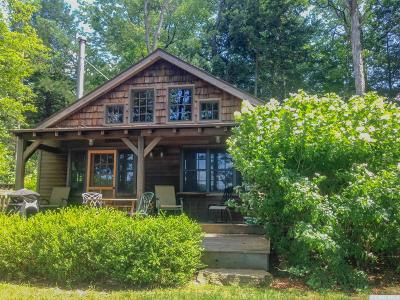 Copake Single Family Home For Sale: 63 Island Drive