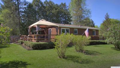 Copake Single Family Home For Sale: 74 Lake Shore