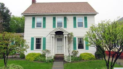 Catskill Single Family Home For Sale: 162 Jefferson Heights