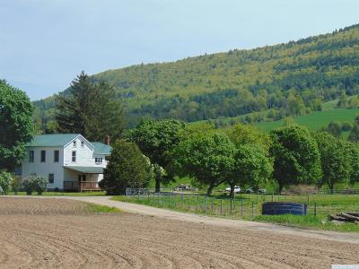 Middleburgh NY Single Family Home For Sale: $159,900