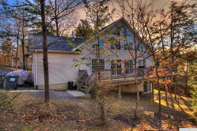Greene County Single Family Home For Sale: 369 Tommy Trail