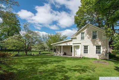 Columbia County Single Family Home For Sale: 707 Taghkanic Churchtown Road