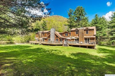 Shandaken NY Single Family Home For Sale: $685,000