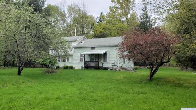 Columbia County Single Family Home For Sale: 351 Ford Road