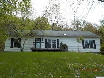 Copake Single Family Home For Sale: 1236 Route 27a