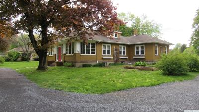 Kinderhook Single Family Home For Sale: 3592 Route 203