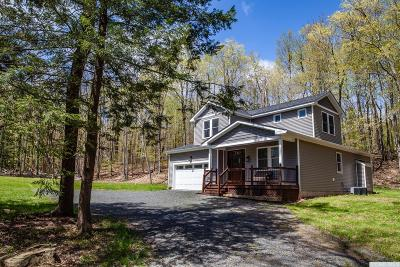 Windham Single Family Home For Sale: 4224 State Route 23