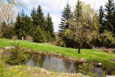 Conesville NY Residential Lots & Land For Sale: $70,000