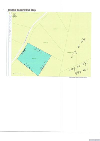 Greene County Residential Lots & Land For Sale: 38 Rappleyea Road