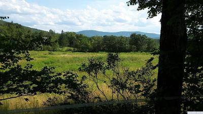 Windham Residential Lots & Land For Sale: Mitchell Hollow Rd.