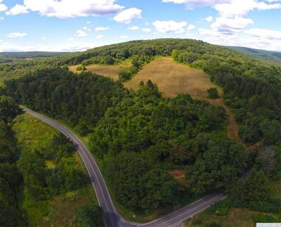 Dutchess County Residential Lots & Land For Sale: Old Route 22