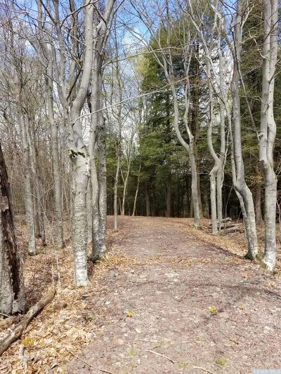 Broome NY Residential Lots & Land For Sale: $23,900