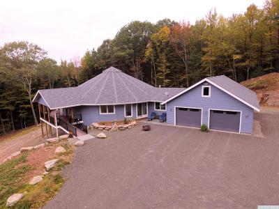 Wawarsing NY Single Family Home For Sale: $749,000