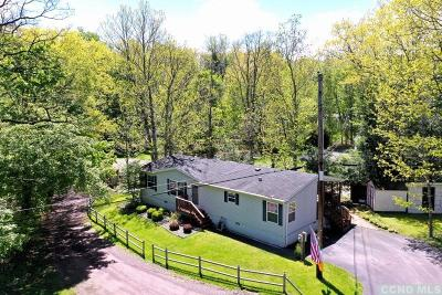 Greene County Single Family Home For Sale: 57 Enchanted Valley Rd Ext