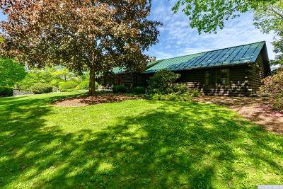 Dutchess County Single Family Home For Sale: 617 Bean River Road
