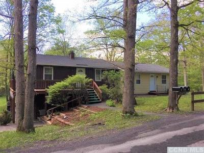 Greene County Multi Family Home Accepted Offer: 2259 Potic Mountain Road
