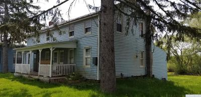 Greene County Single Family Home For Sale: 5857 State Route 81
