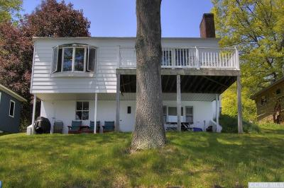 Copake Single Family Home For Sale: 1006 Lakeview Road
