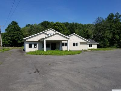 Greene County Commercial For Sale: 7186 Route 32
