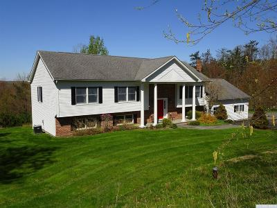 Hillsdale NY Single Family Home For Sale: $499,900