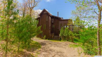 Columbia County Single Family Home For Sale: 427 Mercer Mountain Road