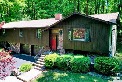 Dutchess County Single Family Home For Sale: 9 Plateau Road