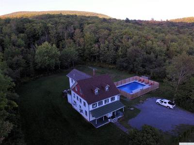 Hunter Single Family Home For Sale: 78 Lustig Road