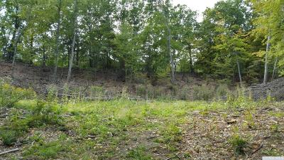 Residential Lots & Land For Sale: Fowler Lake Road