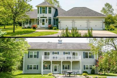 Columbia County Single Family Home For Sale: 662 Route 203