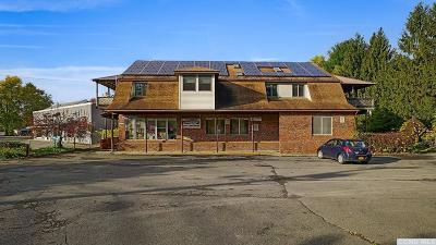 Red Hook Multi Family Home For Sale: 7351 S Broadway
