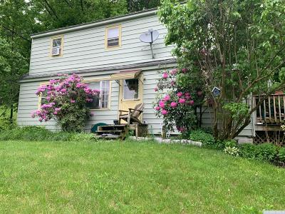 Dutchess County Single Family Home For Sale: 132 N Center Street
