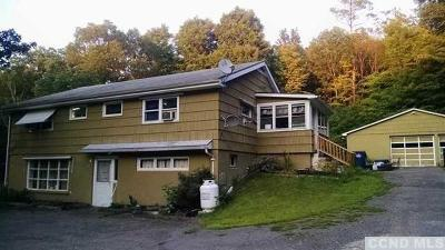 Dutchess County Multi Family Home For Sale: 90 North Rd