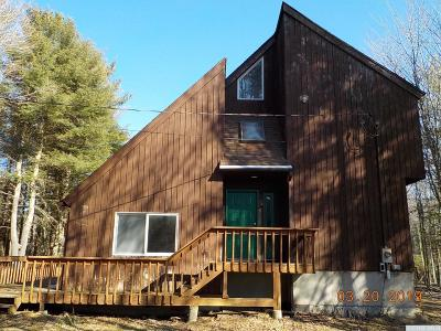 Windham Single Family Home For Sale: 150 Vining Road
