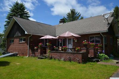 Hunter Single Family Home For Sale: 8 Lake Street