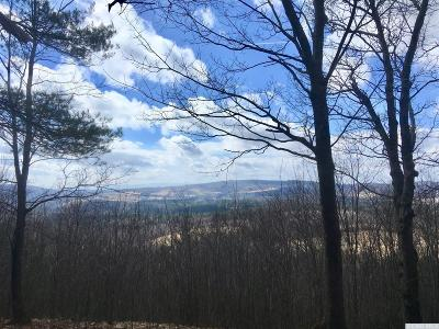 Hillsdale NY Residential Lots & Land For Sale: $250,000