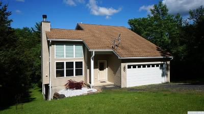 Athens NY Single Family Home Accepted Offer: $246,000