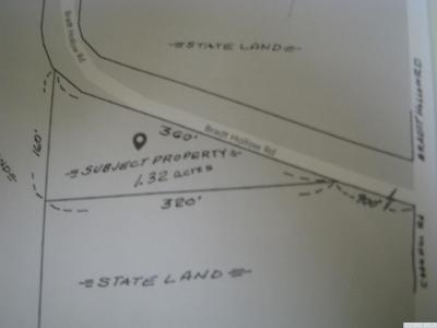 Berne NY Residential Lots & Land For Sale: $29,900
