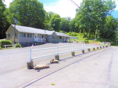 Greene County Single Family Home For Sale: 81 Route 23a