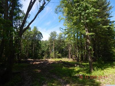 Cairo NY Residential Lots & Land For Sale: $39,900