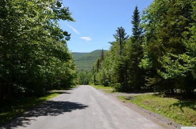 Hunter NY Residential Lots & Land For Sale: $23,800