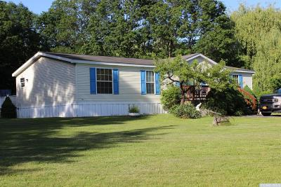 Greene County Single Family Home For Sale: 8758 Rte 32n