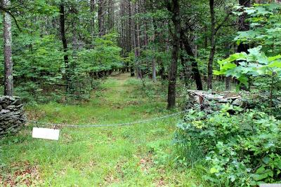 Cairo NY Residential Lots & Land For Sale: $33,500